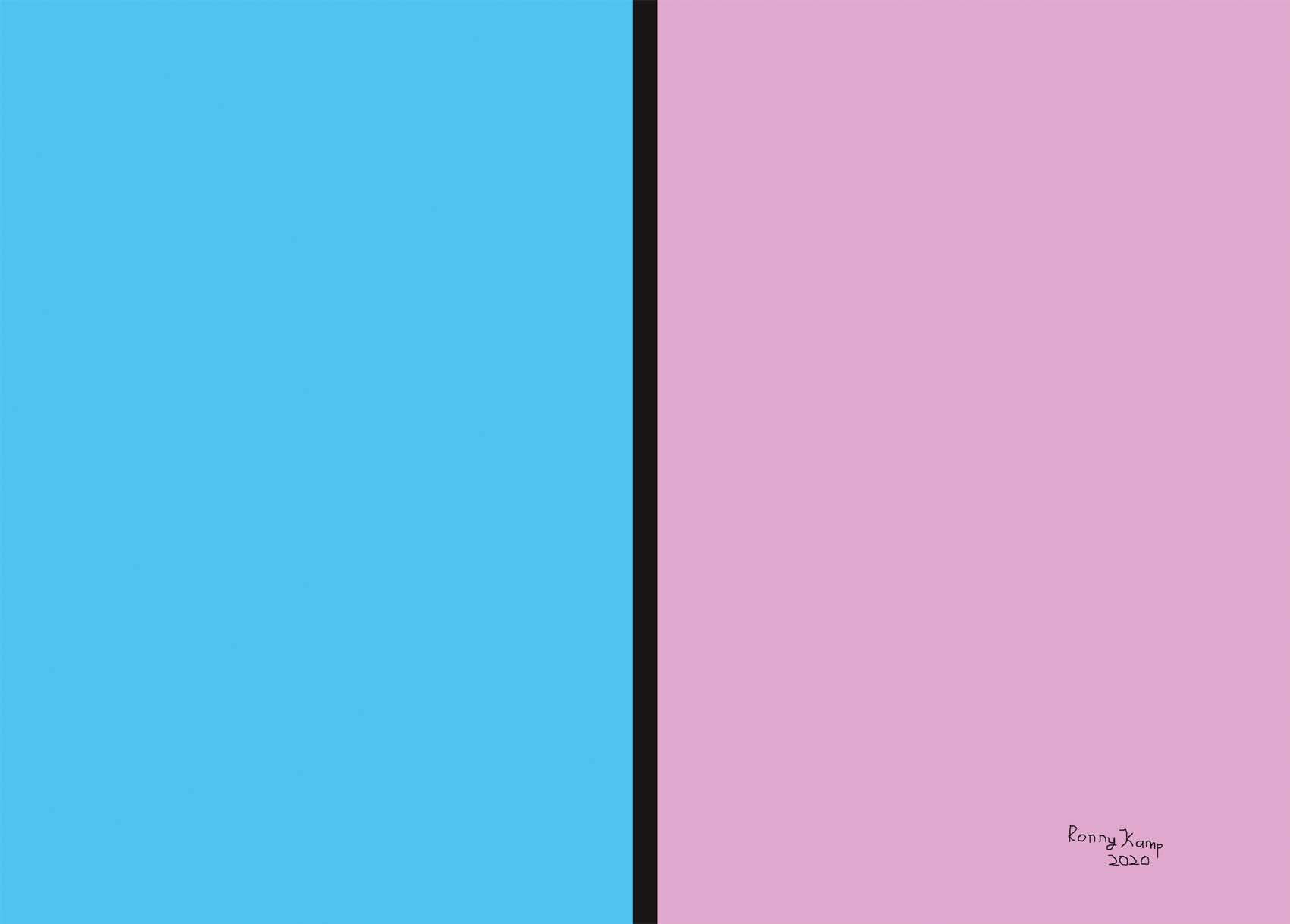 Blauw en roze van elkaar gescheiden door een dikke zwarte lijn. Een kunstwerk dat het tegenovergestelde van genderneutraal uitbeeldt.