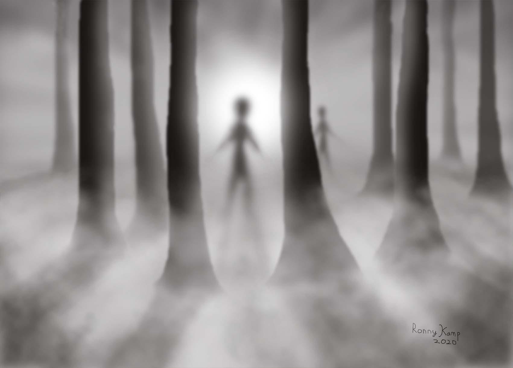 Schimmen in de mistige nacht tussen de bomen door. Wat zou jij doen wanneer je dit zou zien?