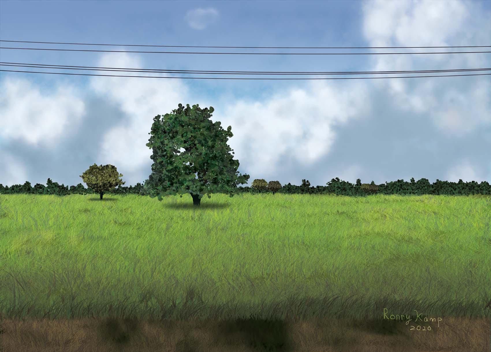 Thais landschap met bomen en wolken achter elektriciteitskabels. Zo zou je het in Nederland ook kunnen zien. De schaduw onder de boom verraadt echter anders. Alleen rond de evenaar kan de zon recht boven ons staan.
