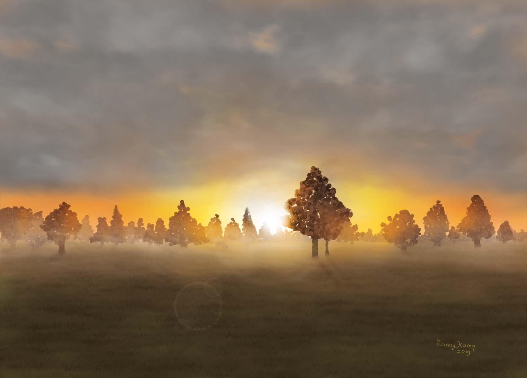 Opkomende zon door bomen over een weiland
