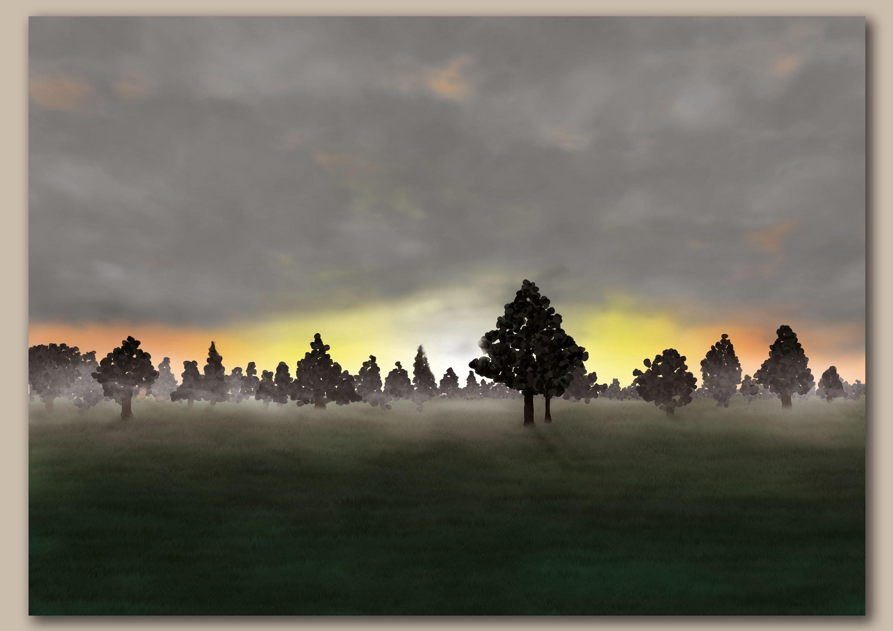 Opkomende zon door bomen over een weiland zonder gloed