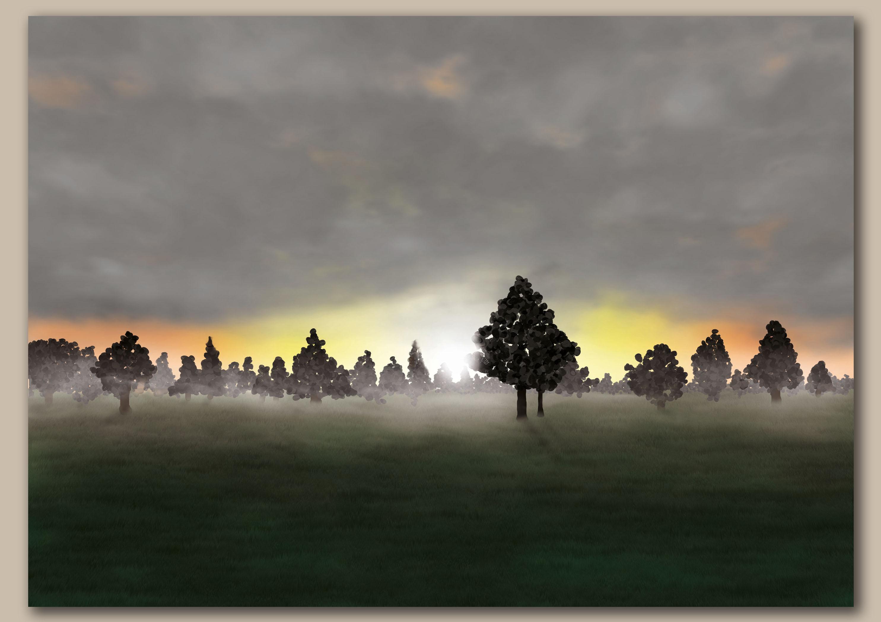 Opkomende zon door bomen over een weiland met vel wit licht