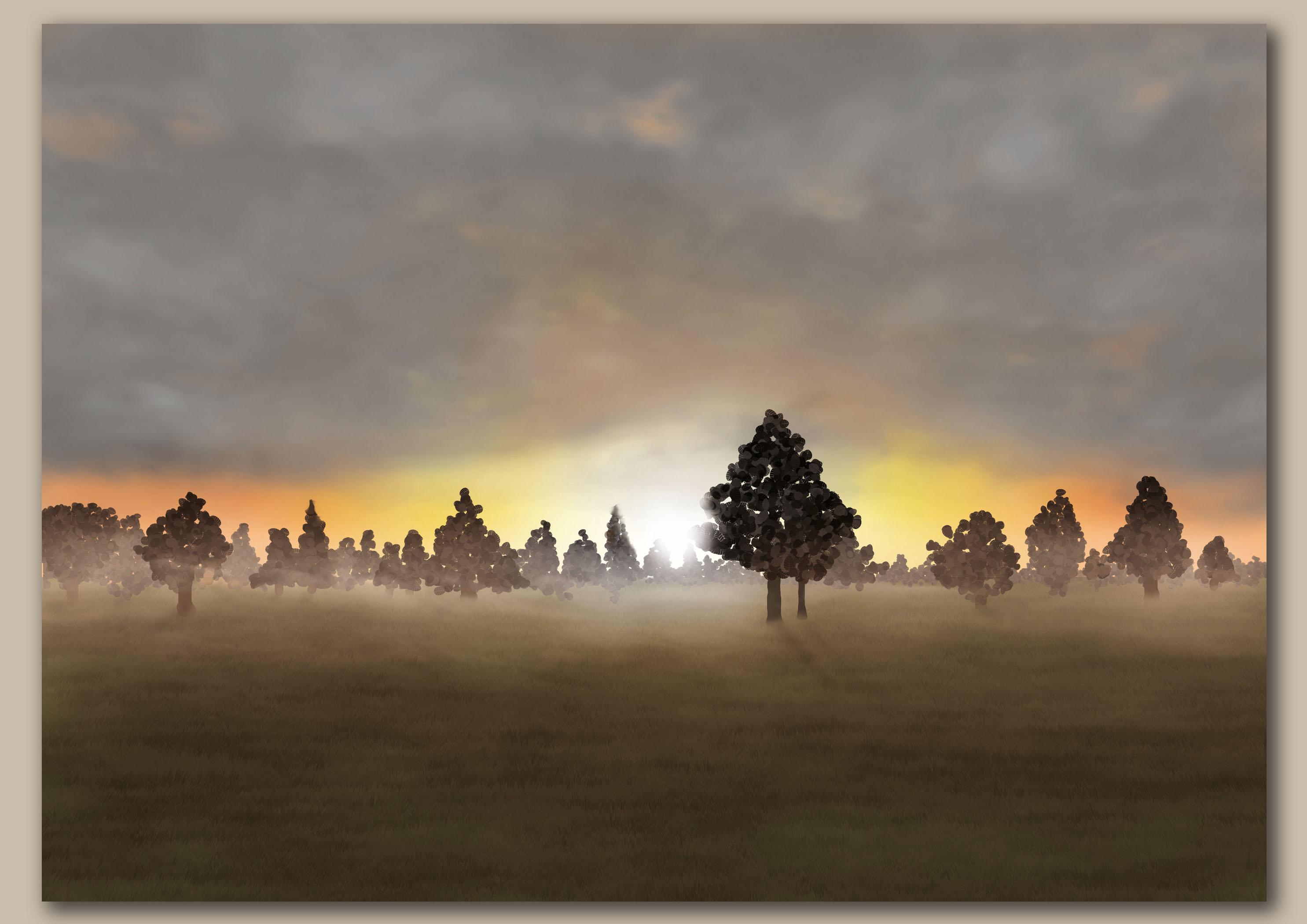 Opkomende zon door bomen over een weiland met lichte oranje licht