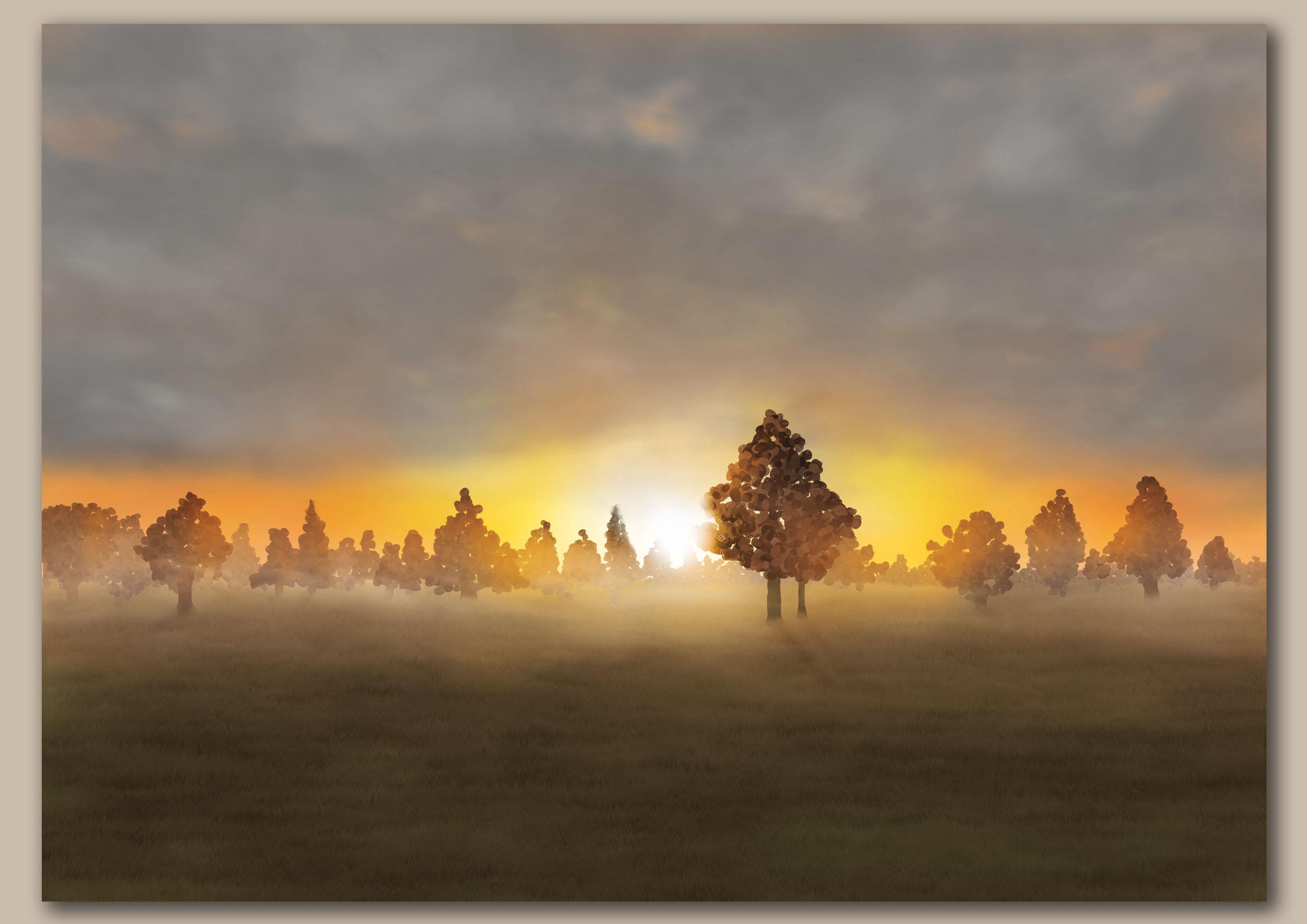 Opkomende zon door bomen over een weiland met velle oranje gloed